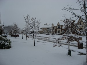 Our quiet street in North Texas!
